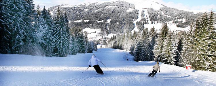 Portes du Soleil - Ski resorts near Geneva